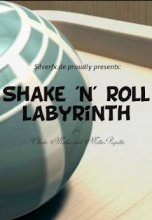Shake 'n' Roll Labyrinth
